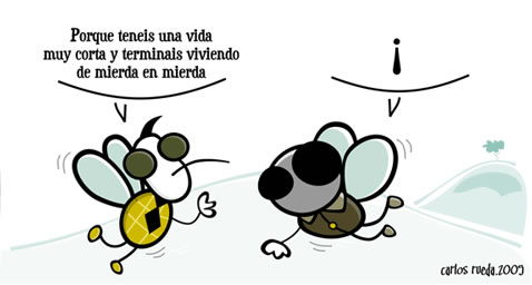 humor chiste mosca